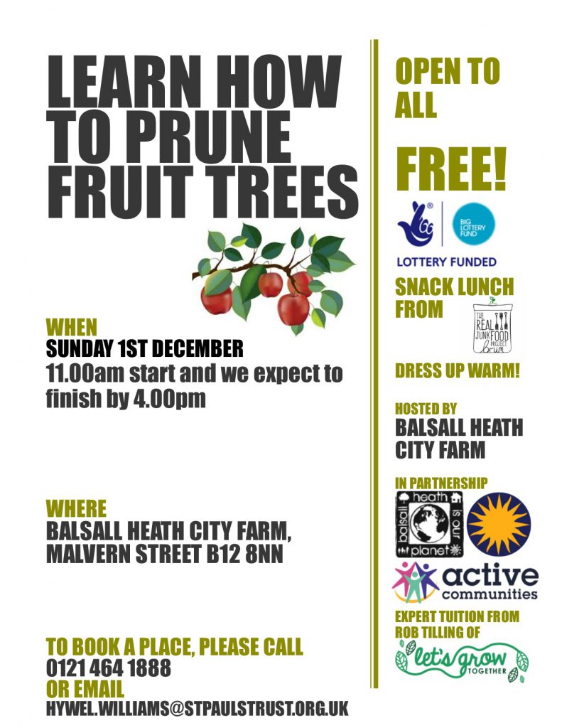 Tree Pruning at the Farm Poster on the 1st of December from 11am